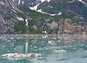 135_Glacier Bay_DSC0614