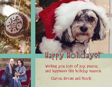 holidaycard2012-2