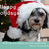 holidaycard2012-4