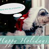 holidaycard2012-5