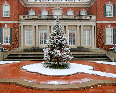 Christmas Tree in front of Westbury House at Old Westbury Gardens. 2017