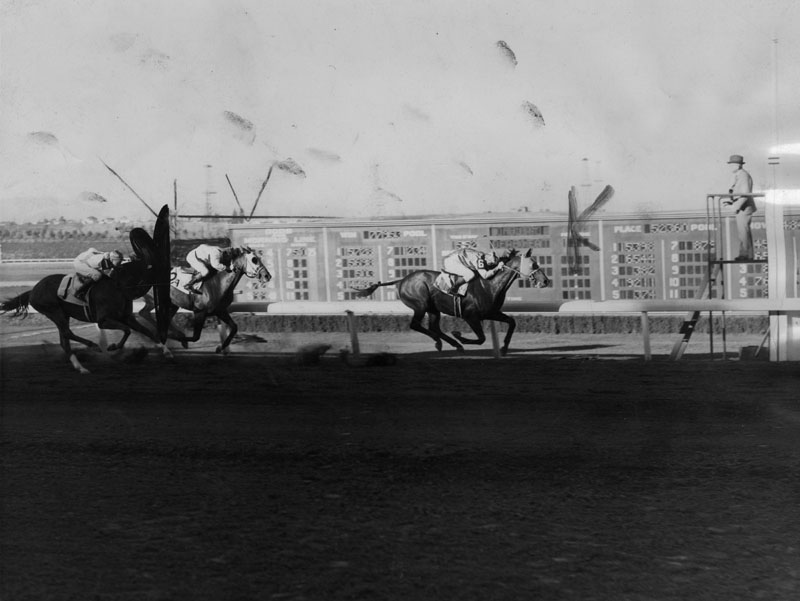 """. Seabiscuit is shown winning the first gold cup from Specify on July 15, 1938. The great Howard champion begins the famous \""""double\"""".   (Los Angeles Public Library)"""