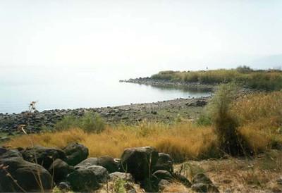 Galilee 5