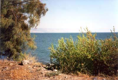 Galilee 2