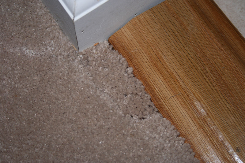 Punch List  Carpet doesn't look good.