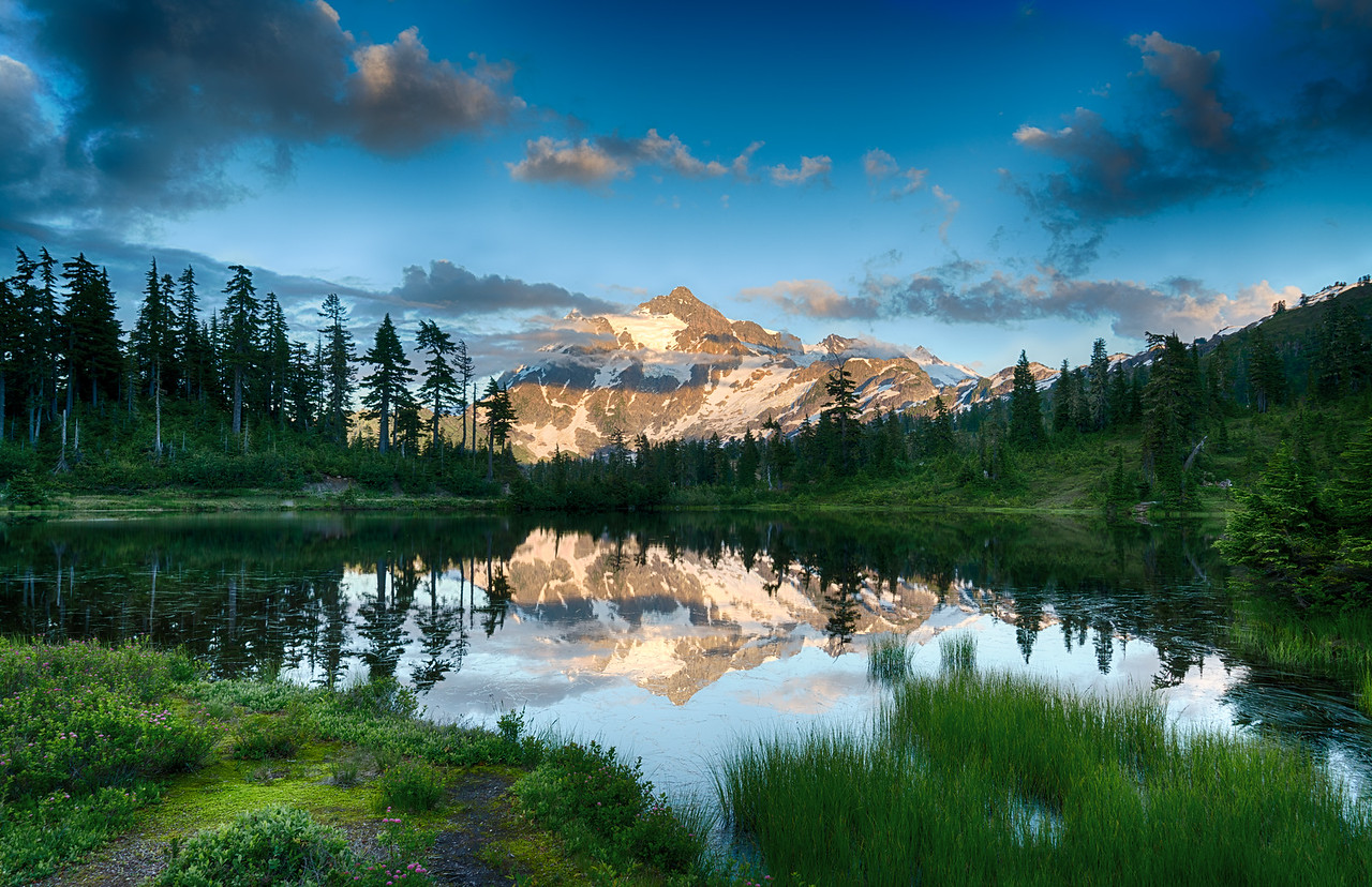 The Calm Neutrality of Nature