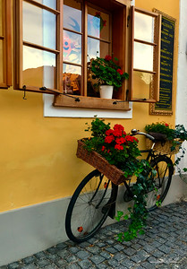 Bicycle flower holder on street in Hallstatt