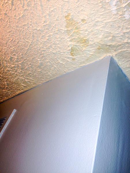 2018-03-10 Main Floor Hallway.  Ceiling stain.