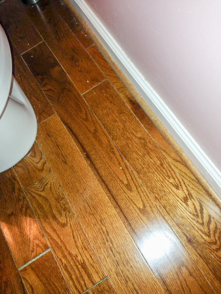 2018-03-10 Main Floor Half-Bath.  Wood floor damage.