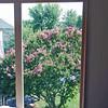 Window frame installed in master bedroom.
