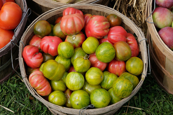 A basket of heirloom tomatoes at a farmer's market