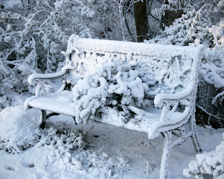Winter Bench