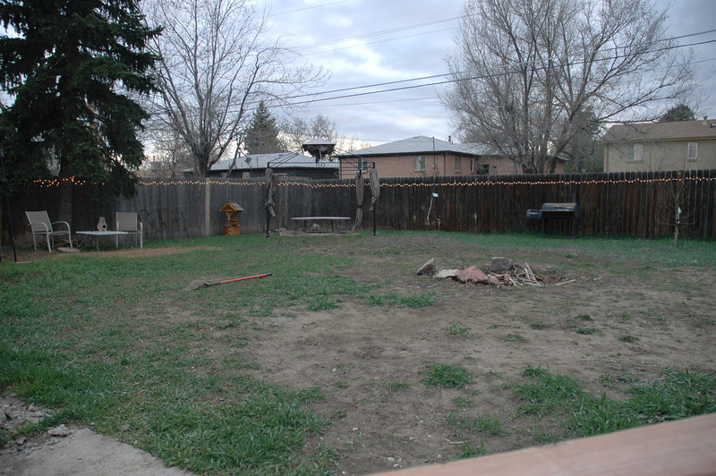 kinda a before shot only had the fire pit then, and moose killed most of the grass that was growing, its starting to recover a little bit here