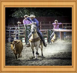 Cowboy In Action#2