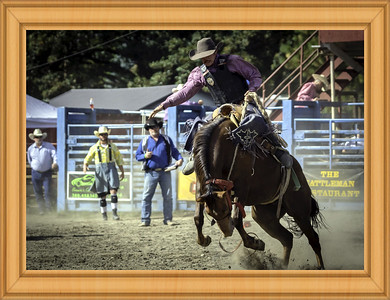 Rodeo Master