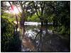 2010-10-14 454_ed_Snapseed2