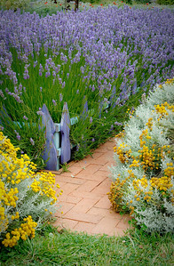Jardin du Solei Lavender Farm, Sequim