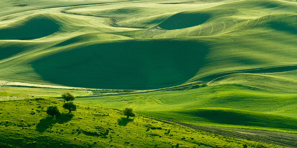 Rolling hills of the Palouse at Sunrise
