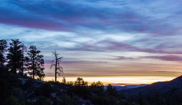 Zion Sunrise I