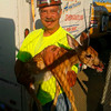Chrysler workers rescue a lost fawn from their parking lot and return itÊto the wooded area from whence it came.<br /> <br /> Submitted by Sandy Klockziem.