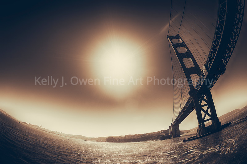 Golden Day on San Francisco Bay