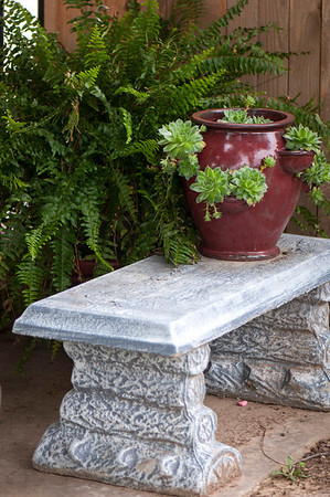 A bench becomes display space for a pot of hen and chicks.