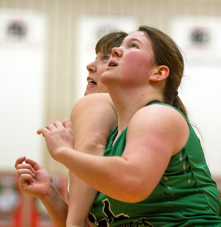 Windsor/Stew-Stras' Pyrinthia Ballinger, right, tries to block out against Shelbyville's McKenna Donald.