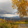 An autumn sonnet in the mountains.  Ellsworth, NH.
