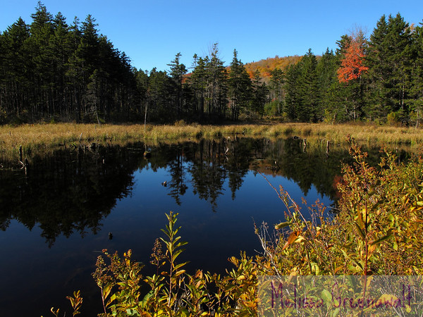 Fall comes to the Beebe River area, Sandwich, NH.