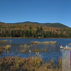 Black Mountain presides over Guinea Pond in the Sandwich Wilderness, White Mountains, NH.