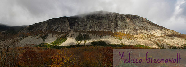Cannon Cliff, painted orange and yellow for the fall. Climbers flock to this mile-long cliff in Franconia Notch.