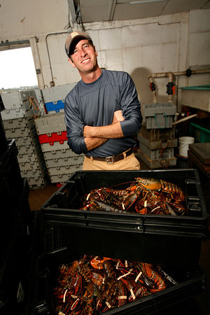 Allegra Boverman/Gloucester Daily Times. Joey Ciaramitaro of Captain Joe and Sons Wholesale Lobster Company with some of his lobsters. Massachusetts Lobster Day is on Saturday.