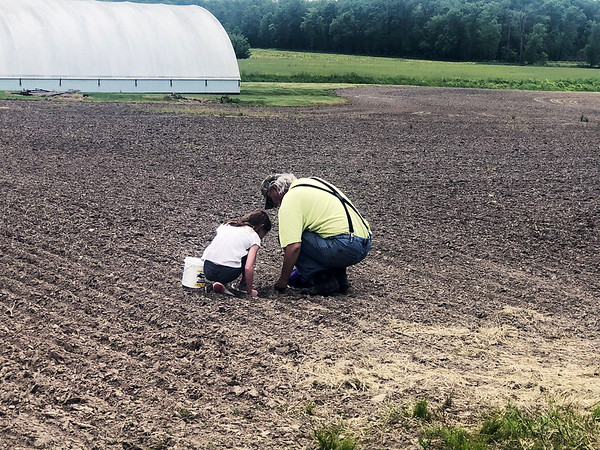 Bryleigh Doerfler and Pop Phil Leonard check for beans spouts in Ingraham. <br /> Submitted by Kathy Leonard