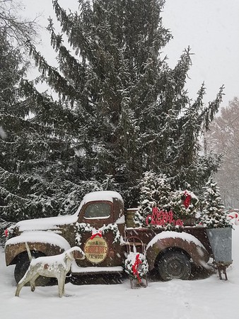 Dixie Carter submitted a photo of her truck in the front yard in Ramsey on Dec 15.