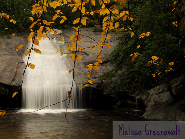 A curtain of leaves, a curtain of water.  Fall hangs on at Beede Falls, Sandwich, NH.