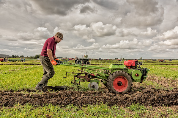 Ploughing Match, Cottenham, Cambridgeshire UK