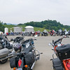 Bikes at Bush Bean tour