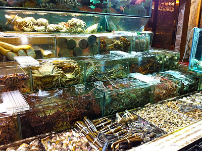 Seafood at Hong Kong restaurant.  You choose the fish for your meal! (Photo by Jianwei Sun).