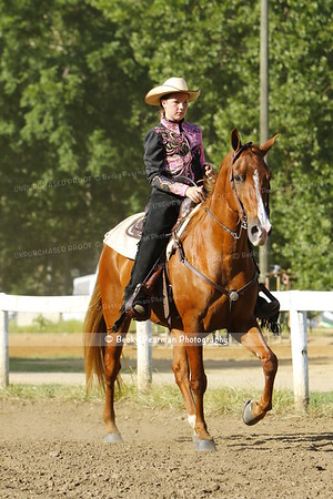 LMRS-All Gaited and Walking Classes-7-23-16