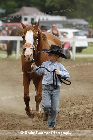 Horse Shows & Clinics 2015