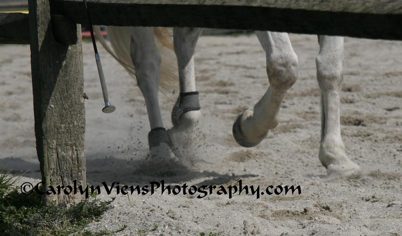 horsing around.jpg