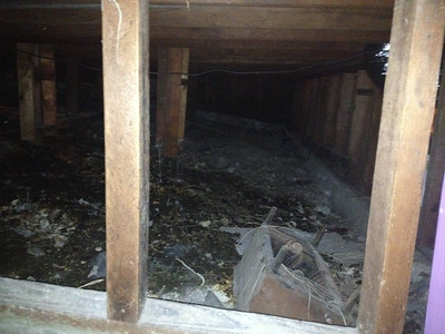 This is the crawl space behind the second room of the basement that needs to be cleaned up and, if possible, blocked off so cat can't sneak down and use dirt as a litter box.