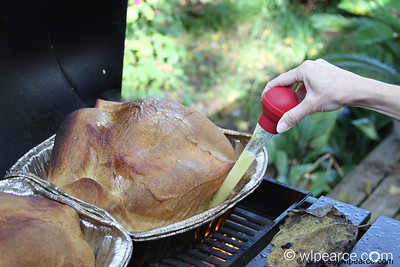 Pull butter out of the bottom of the pan and thoroughly cover the turkey.