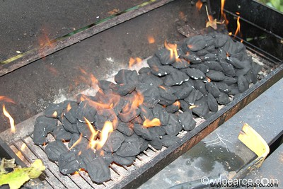 Go ahead and start the fire.  You'll probably need more charcoal than you're accustomed to using.  Use your right cursor key to step through the recipe...