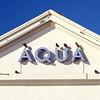 Aqua Starlings