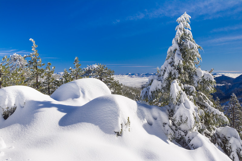 The view looking inland from the summit of Horse Mountain after a Christmas snowstorm,  Humboldt County, California, December 2015. [Horse Mountain 2015-12 016 Humboldt-CA-USA]