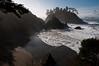 College Cove 2012-01 003 Humboldt-CA-USA