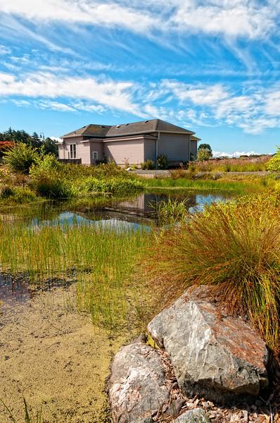 Trinidad Museum and Native Plant Garden, Humboldt, California, June 2012.