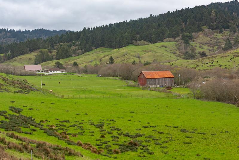 Fleeners Creek farm