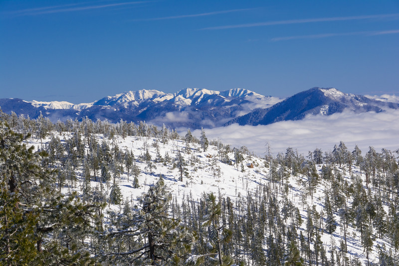 Snowy mountain landscape, looking inland from the summit of Horse Mountain after a Christmas snowstorm,  Humboldt County, California, December 2015. [Horse Mountain 2015-12 008 Humboldt-CA-USA]